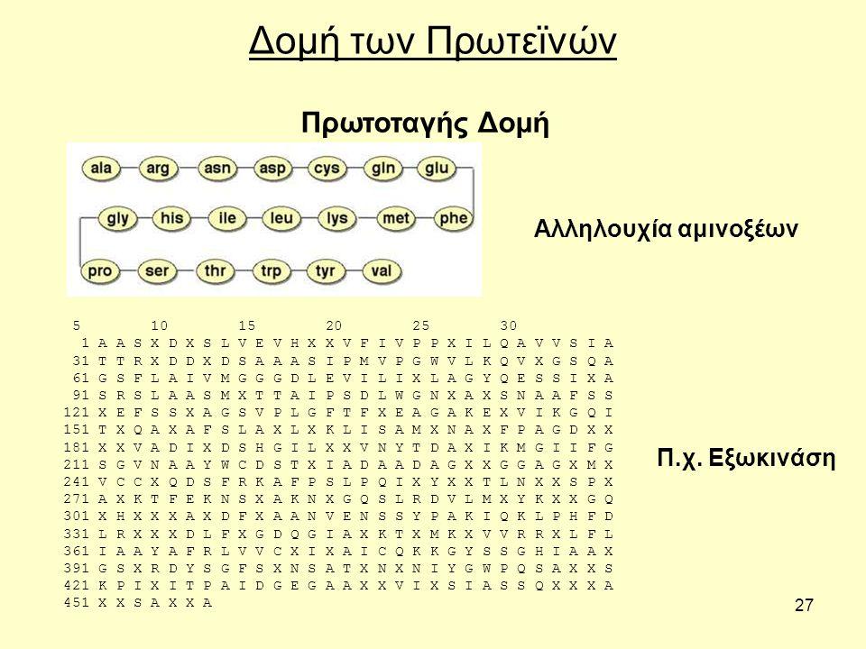 27 Δομή των Πρωτεϊνών 5 10 15 20 25 30 1 A A S X D X S L V E V H X X V F I V P P X I L Q A V V S I A 31 T T R X D D X D S A A A S I P M V P G W V L K Q V X G S Q A 61 G S F L A I V M G G G D L E V I L I X L A G Y Q E S S I X A 91 S R S L A A S M X T T A I P S D L W G N X A X S N A A F S S 121 X E F S S X A G S V P L G F T F X E A G A K E X V I K G Q I 151 T X Q A X A F S L A X L X K L I S A M X N A X F P A G D X X 181 X X V A D I X D S H G I L X X V N Y T D A X I K M G I I F G 211 S G V N A A Y W C D S T X I A D A A D A G X X G G A G X M X 241 V C C X Q D S F R K A F P S L P Q I X Y X X T L N X X S P X 271 A X K T F E K N S X A K N X G Q S L R D V L M X Y K X X G Q 301 X H X X X A X D F X A A N V E N S S Y P A K I Q K L P H F D 331 L R X X X D L F X G D Q G I A X K T X M K X V V R R X L F L 361 I A A Y A F R L V V C X I X A I C Q K K G Y S S G H I A A X 391 G S X R D Y S G F S X N S A T X N X N I Y G W P Q S A X X S 421 K P I X I T P A I D G E G A A X X V I X S I A S S Q X X X A 451 X X S A X X A Πρωτοταγής Δομή Π.χ.