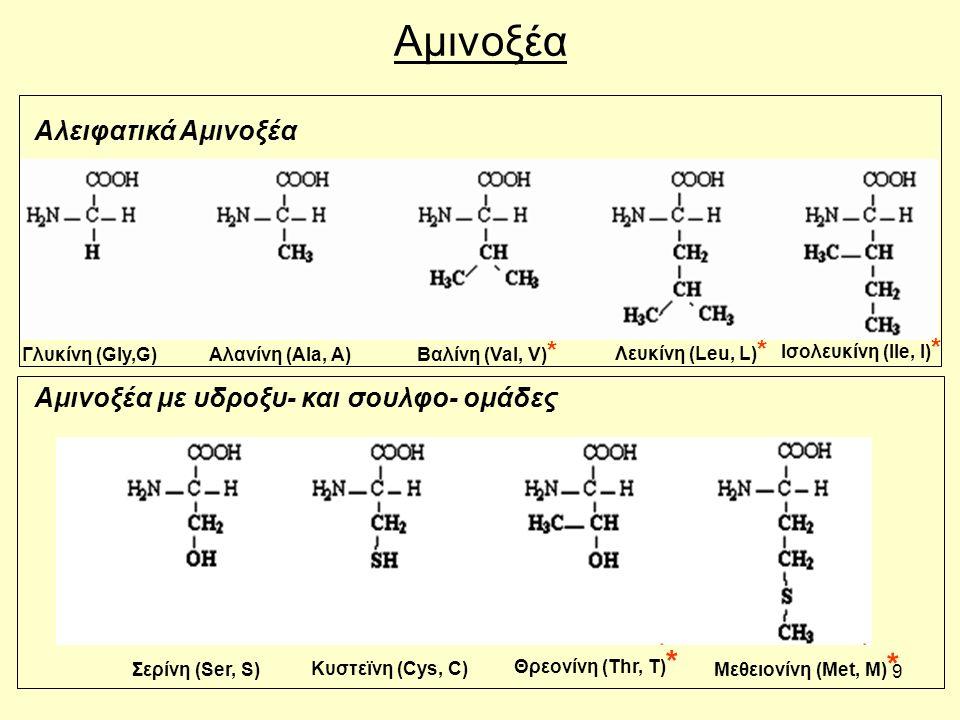 9 Αμινοξέα Γλυκίνη (Gly,G) Αλανίνη (Ala, A) Βαλίνη (Val, V) * Λευκίνη (Leu, L) * Ισολευκίνη (Ile, I) * Αλειφατικά Αμινοξέα Σερίνη (Ser, S) Κυστεϊνη (Cys, C) Θρεονίνη (Thr, T) * Μεθειονίνη (Met, M) * Αμινοξέα με υδροξυ- και σουλφο- ομάδες