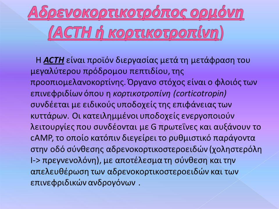 Η ACTH είναι προϊόν διεργασίας μετά τη μετάφραση του μεγαλύτερου πρόδρομου πεπτιδίου, της προοπιομελανοκορτίνης.