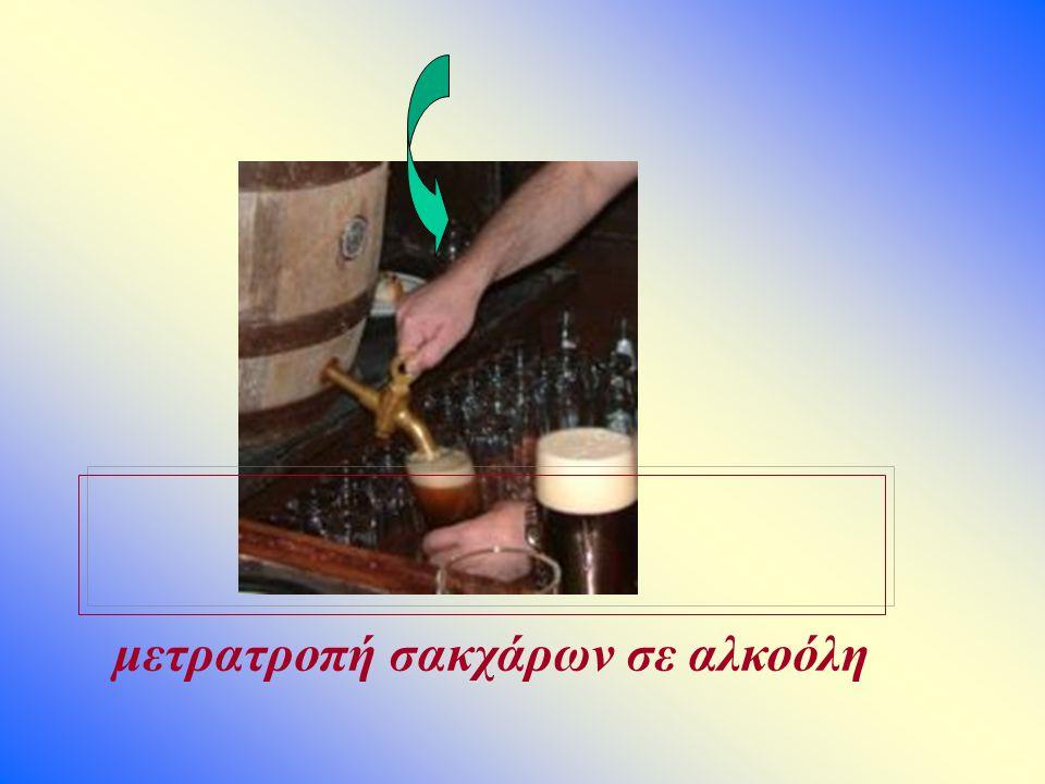 μετρατροπή σακχάρων σε αλκοόλη