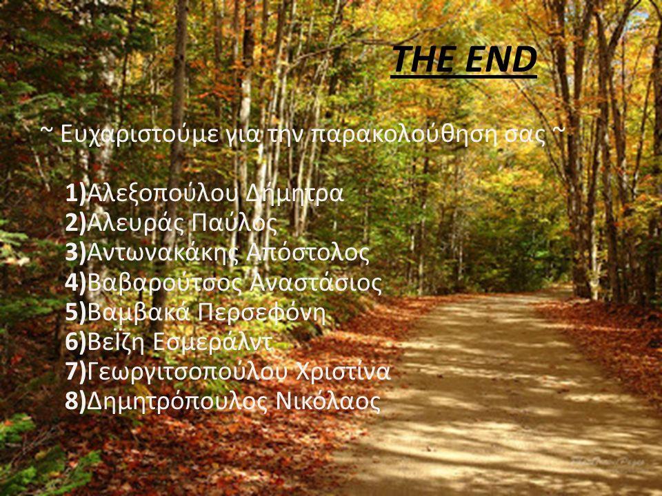 THE END ~ Ευχαριστούμε για την παρακολούθηση σας ~ 1)Αλεξοπούλου Δήμητρα 2)Αλευράς Παύλος 3)Αντωνακάκης Απόστολος 4)Βαβαρούτσος Αναστάσιος 5)Βαμβακά Περσεφόνη 6)ΒεΪζη Εσμεράλντ 7)Γεωργιτσοπούλου Χριστίνα 8)Δημητρόπουλος Νικόλαος