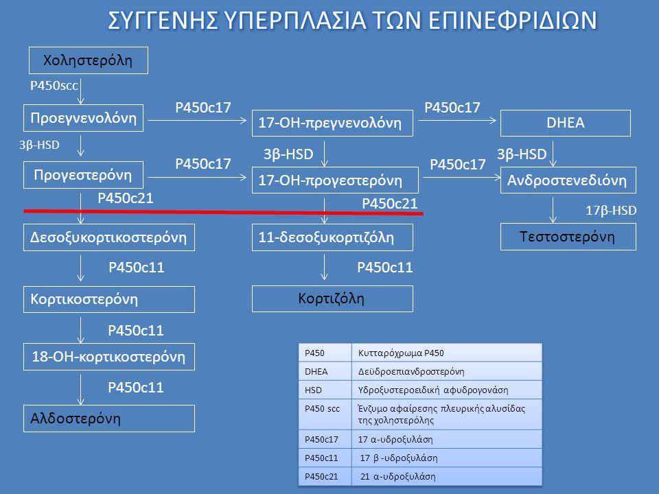 Χοληστερόλη Προεγνενολόνη Προγεστερόνη Δεσοξυκορτικοστερόνη Κορτικοστερόνη 18-ΟΗ-κορτικοστερόνη Αλδοστερόνη P450scc 3β-HSD P450c21 P450c11 17-ΟΗ-πρεγνενολόνηDHEA 17-OH-προγεστερόνηΑνδροστενεδιόνη P450c17 11-δεσοξυκορτιζόλη Κορτιζόλη P450c21 P450c11 Τεστοστερόνη 17β-HSD 3β-HSD