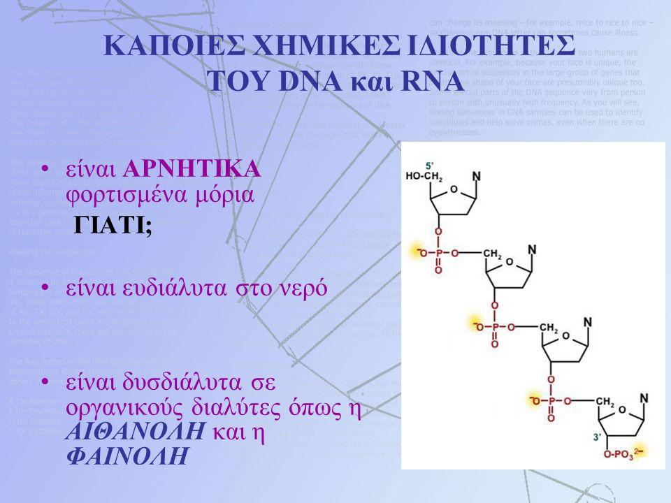 ΚΑΠΟΙΕΣ ΧΗΜΙΚΕΣ ΙΔΙΟΤΗΤΕΣ ΤΟΥ DNA και RNA είναι ΑΡΝΗΤΙΚΑ φορτισμένα μόρια ΓΙΑΤΙ; είναι ευδιάλυτα στο νερό είναι δυσδιάλυτα σε οργανικούς διαλύτες όπως η ΑΙΘΑΝΟΛΗ και η ΦΑΙΝΟΛΗ