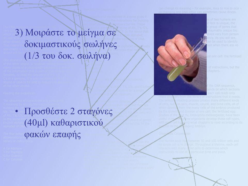 3) Μοιράστε το μείγμα σε δοκιμαστικούς σωλήνες (1/3 του δοκ. σωλήνα) Προσθέστε 2 σταγόνες (40μl) καθαριστικού φακών επαφής