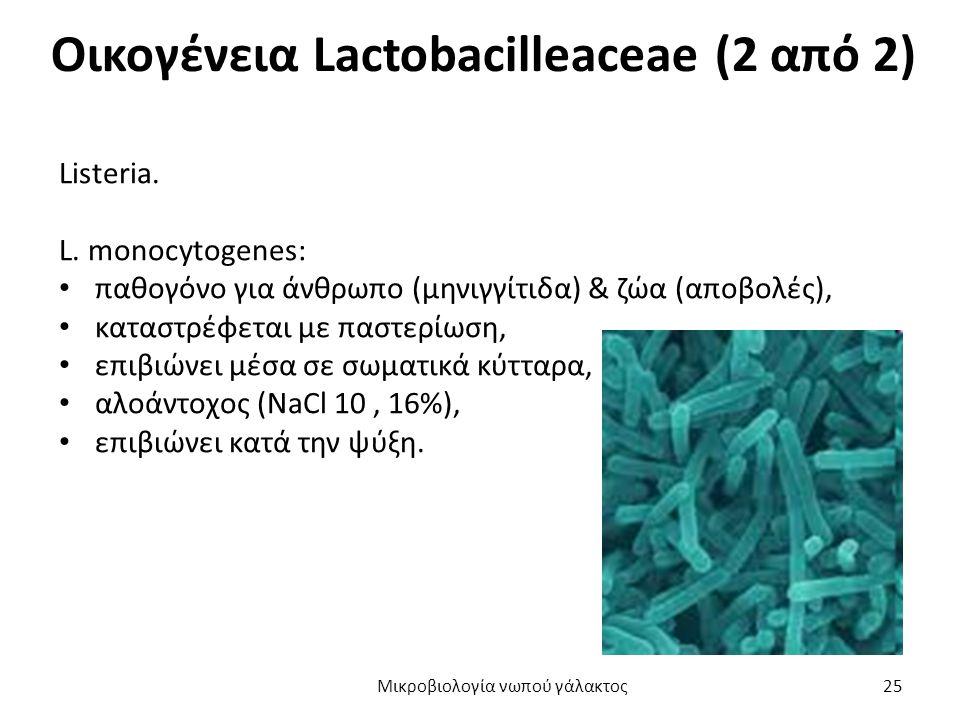 Οικογένεια Lactobacilleaceae (2 από 2) Listeria. L. monocytogenes: παθογόνο για άνθρωπο (μηνιγγίτιδα) & ζώα (αποβολές), καταστρέφεται με παστερίωση, ε