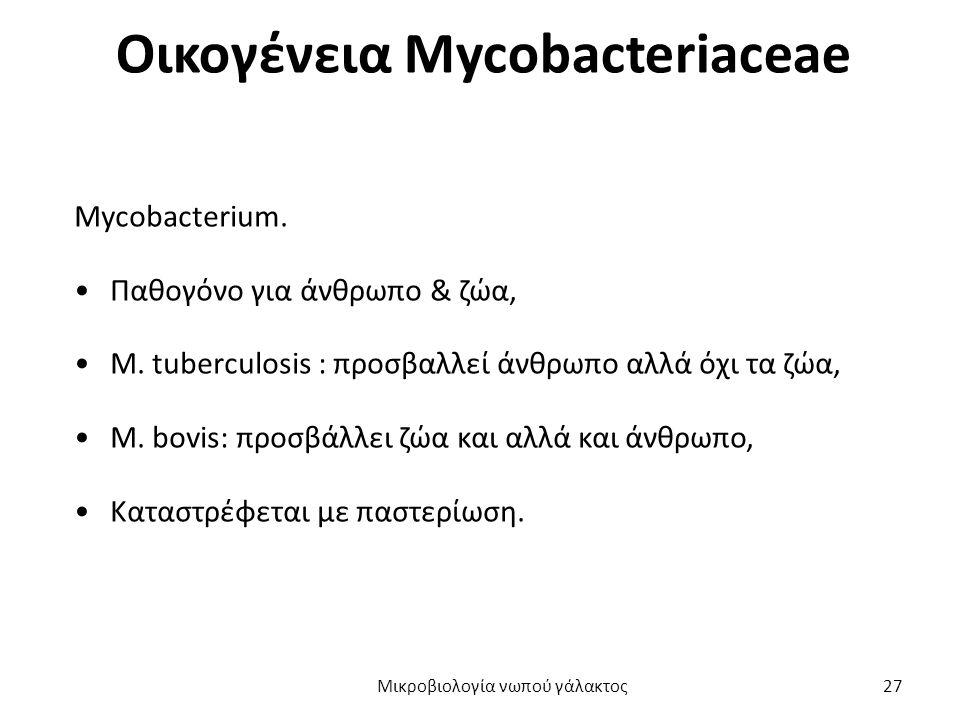 Οικογένεια Mycobacteriaceae Mycobacterium. Παθογόνο για άνθρωπο & ζώα, M. tuberculosis : προσβαλλεί άνθρωπο αλλά όχι τα ζώα, M. bovis: προσβάλλει ζώα