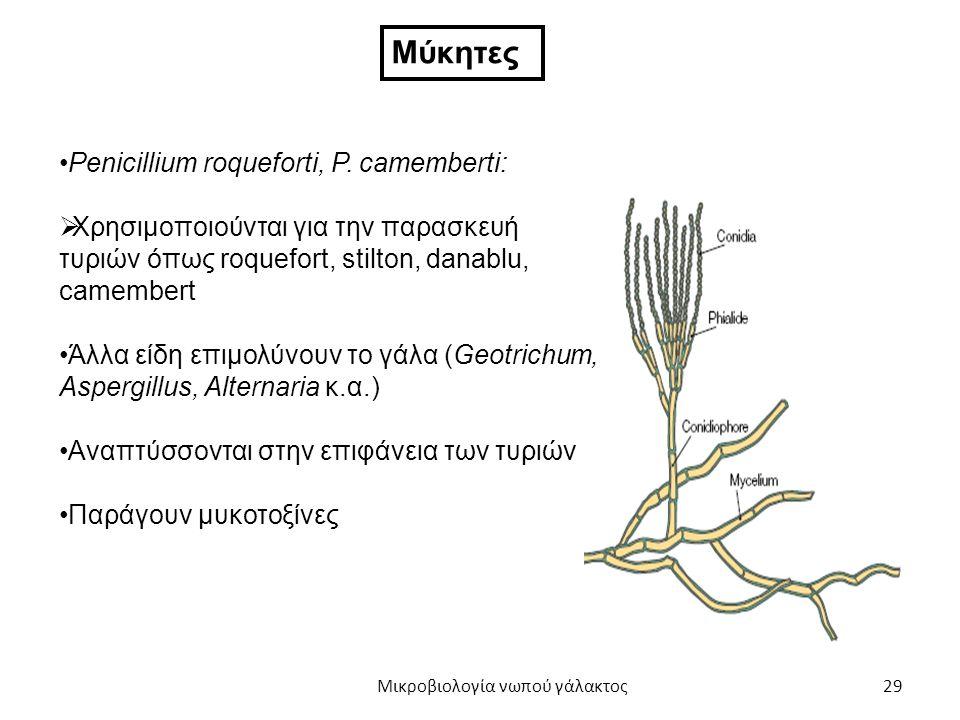 29 Μύκητες Penicillium roqueforti, P. camemberti:  Χρησιμοποιούνται για την παρασκευή τυριών όπως roquefort, stilton, danablu, camembert Άλλα είδη επ