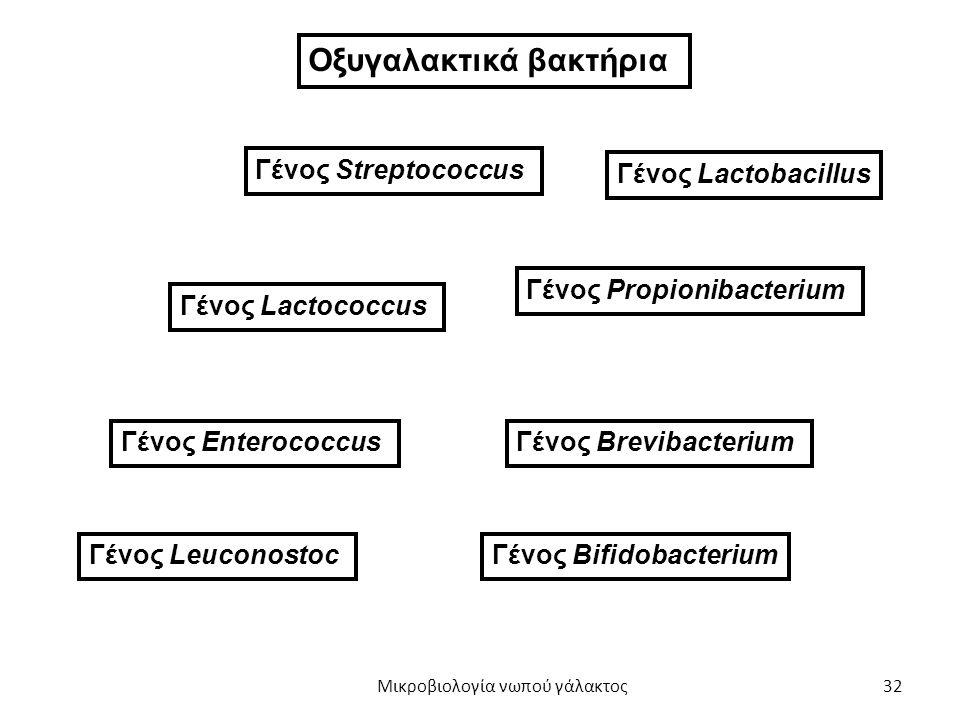 32 Γένος Streptococcus Γένος Lactococcus Γένος Enterococcus Γένος Leuconostoc Γένος Lactobacillus Γένος Propionibacterium Γένος Brevibacterium Γένος B