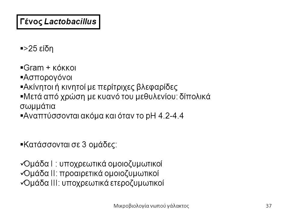 37 Γένος Lactobacillus  >25 είδη  Gram + κόκκοι  Ασπορογόνοι  Ακίνητοι ή κινητοί με περίτριχες βλεφαρίδες  Μετά από χρώση με κυανό του μεθυλενίου