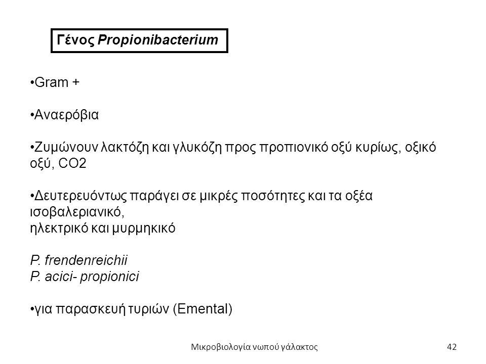 42 Γένος Propionibacterium Gram + Αναερόβια Ζυμώνουν λακτόζη και γλυκόζη προς προπιονικό οξύ κυρίως, οξικό οξύ, CO2 Δευτερευόντως παράγει σε μικρές πο