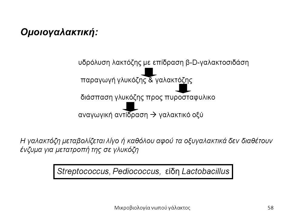 58 Ομοιογαλακτική: υδρόλυση λακτόζης με επίδραση β-D-γαλακτοσιδάση παραγωγή γλυκόζης & γαλακτόζης διάσπαση γλυκόζης προς πυροσταφυλικο αναγωγική αντίδ