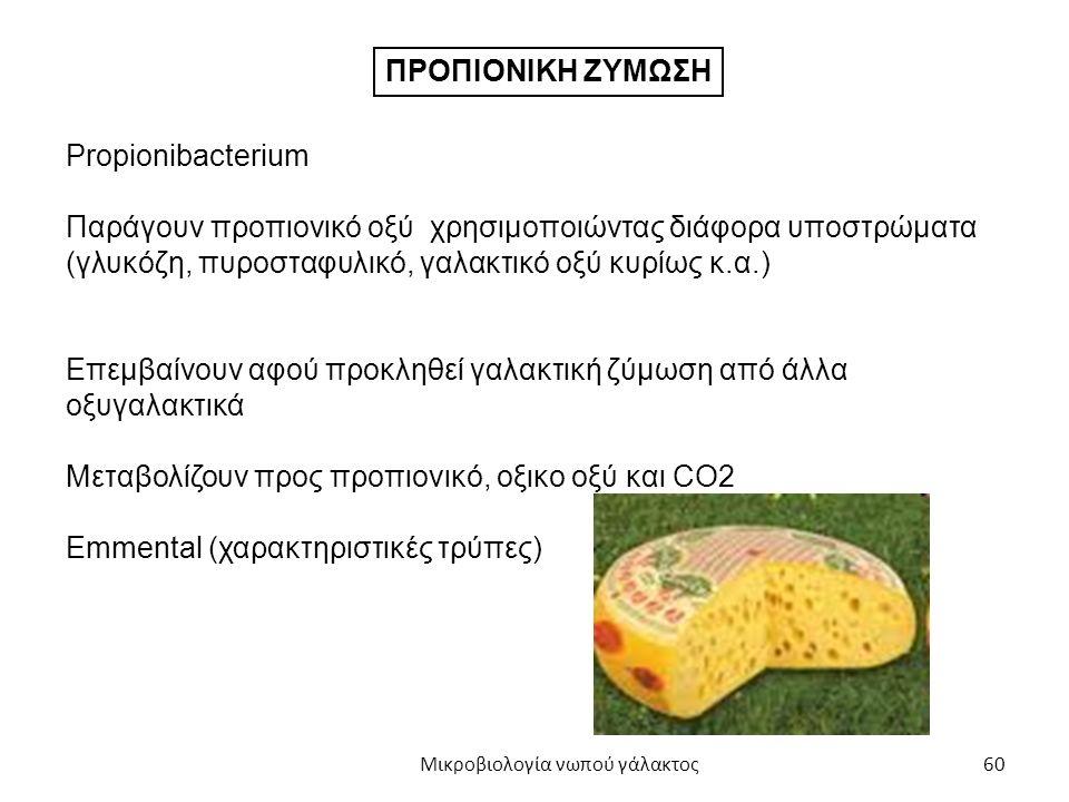 60 ΠΡΟΠΙΟΝΙΚΗ ΖΥΜΩΣΗ Propionibacterium Παράγουν προπιονικό οξύ χρησιμοποιώντας διάφορα υποστρώματα (γλυκόζη, πυροσταφυλικό, γαλακτικό οξύ κυρίως κ.α.)