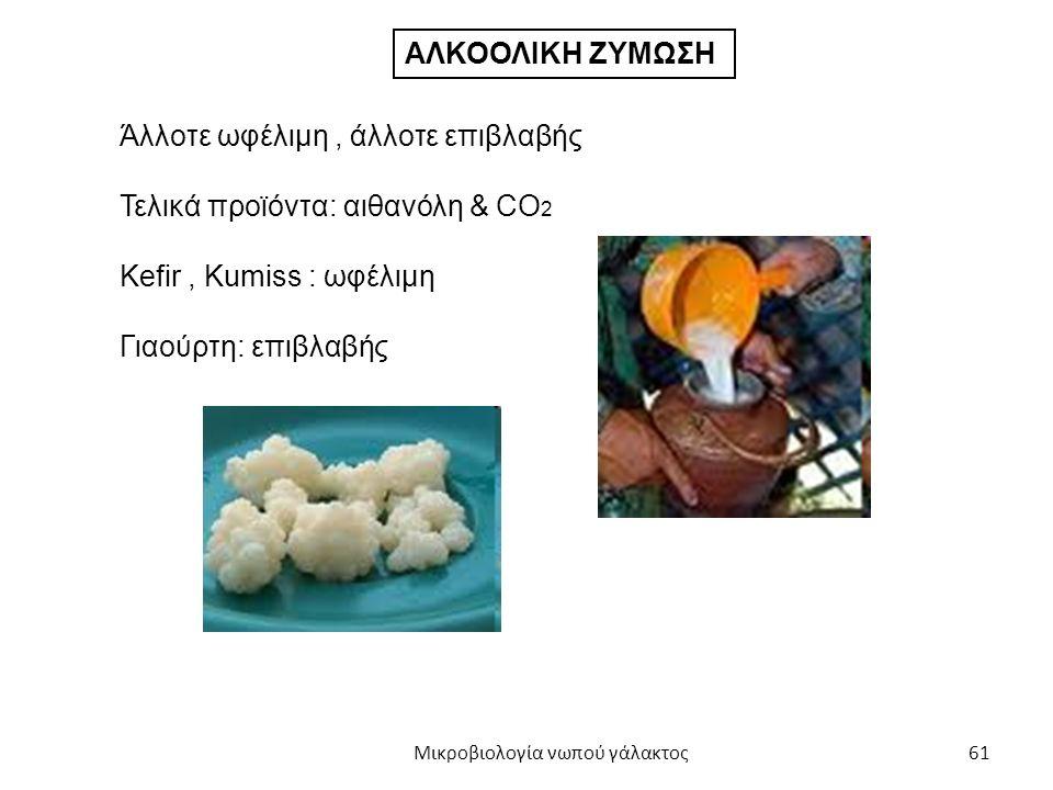 61 ΑΛΚΟΟΛΙΚΗ ΖΥΜΩΣΗ Άλλοτε ωφέλιμη, άλλοτε επιβλαβής Τελικά προϊόντα: αιθανόλη & CO 2 Kefir, Kumiss : ωφέλιμη Γιαούρτη: επιβλαβής Μικροβιολογία νωπού