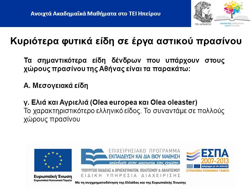 Κυριότερα φυτικά είδη σε έργα αστικού πρασίνου Ανοιχτά Ακαδημαϊκά Μαθήματα στο ΤΕΙ Ηπείρου Τα σημαντικότερα είδη δένδρων που υπάρχουν στους χώρους πρασίνου της Αθήνας είναι τα παρακάτω: Α.