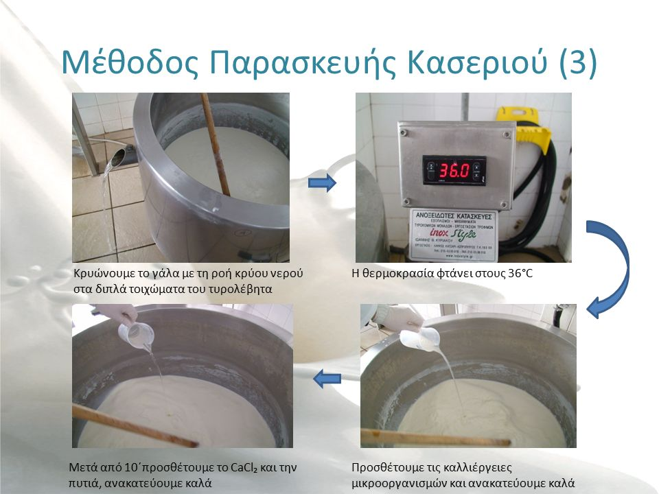 Μέθοδος Παρασκευής Κασεριού (3) Κρυώνουμε το γάλα με τη ροή κρύου νερού στα διπλά τοιχώματα του τυρολέβητα Η θερμοκρασία φτάνει στους 36°C Προσθέτουμε τις καλλιέργειες μικροοργανισμών και ανακατεύουμε καλά Μετά από 10΄προσθέτουμε το CaCl₂ και την πυτιά, ανακατεύουμε καλά