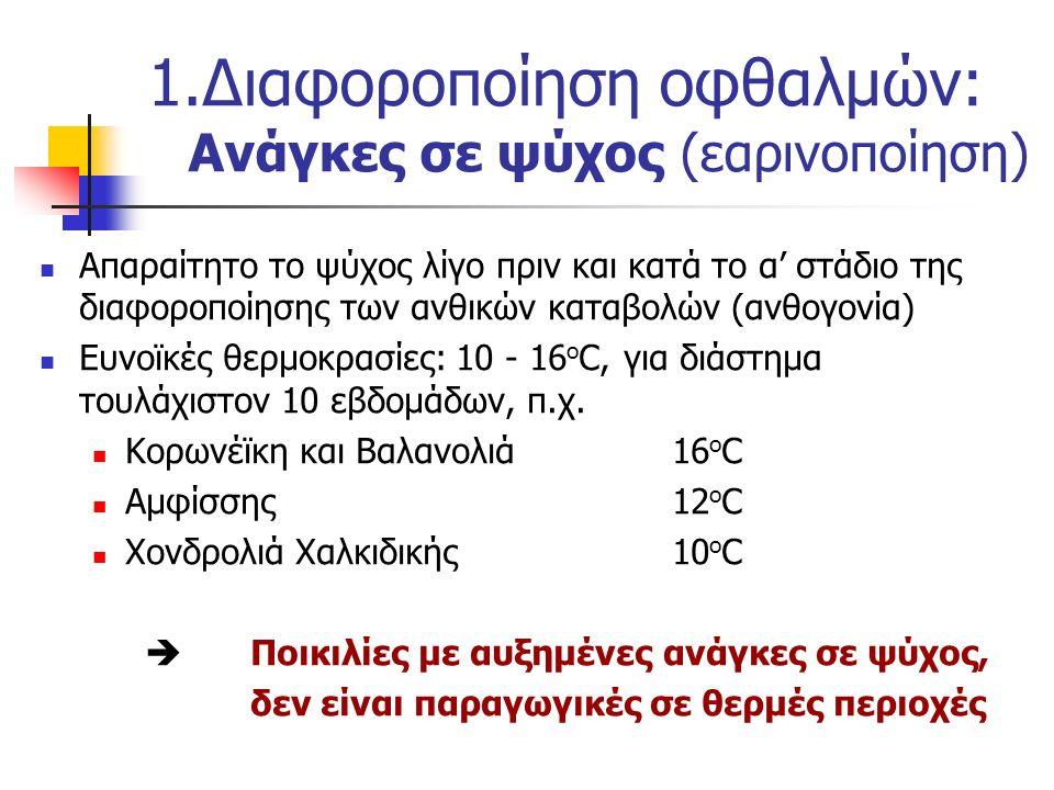 Απαραίτητο το ψύχος λίγο πριν και κατά το α' στάδιο της διαφοροποίησης των ανθικών καταβολών (ανθογονία) Ευνοϊκές θερμοκρασίες: 10 - 16 ο C, για διάστ