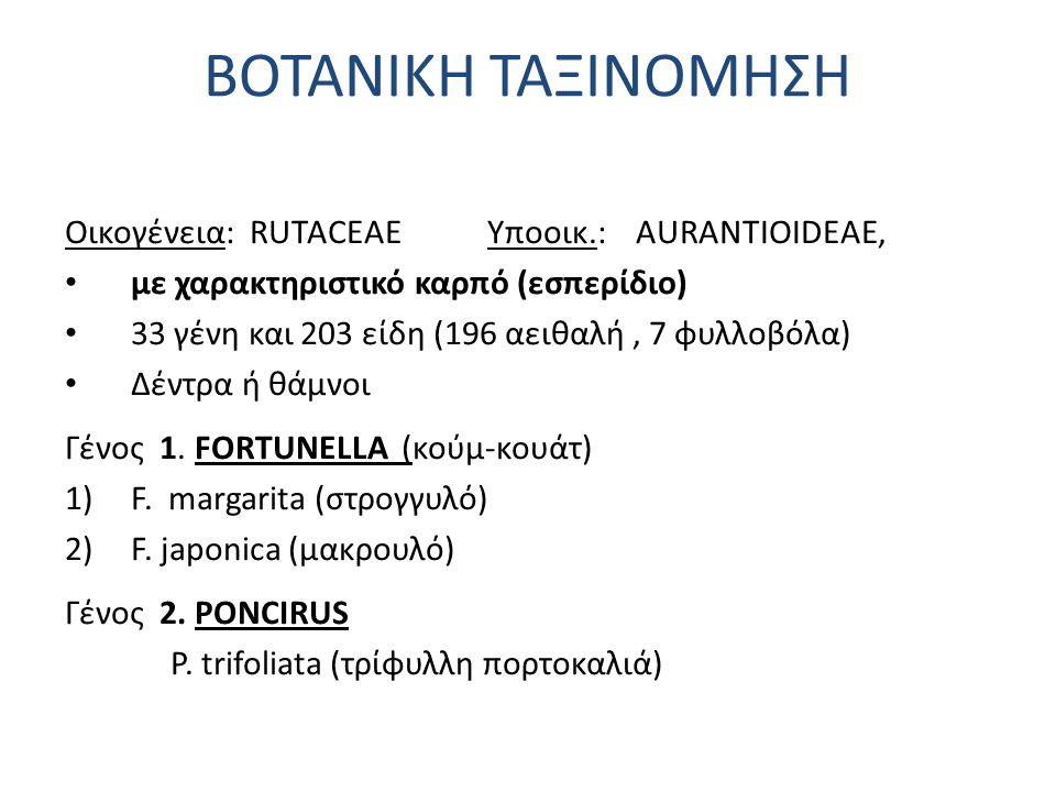 Οικογένεια: RUTACEAE Υποοικ.: AURANTIOIDEAE, με χαρακτηριστικό καρπό (εσπερίδιο) 33 γένη και 203 είδη (196 αειθαλή, 7 φυλλοβόλα) Δέντρα ή θάμνοι Γένος 1.
