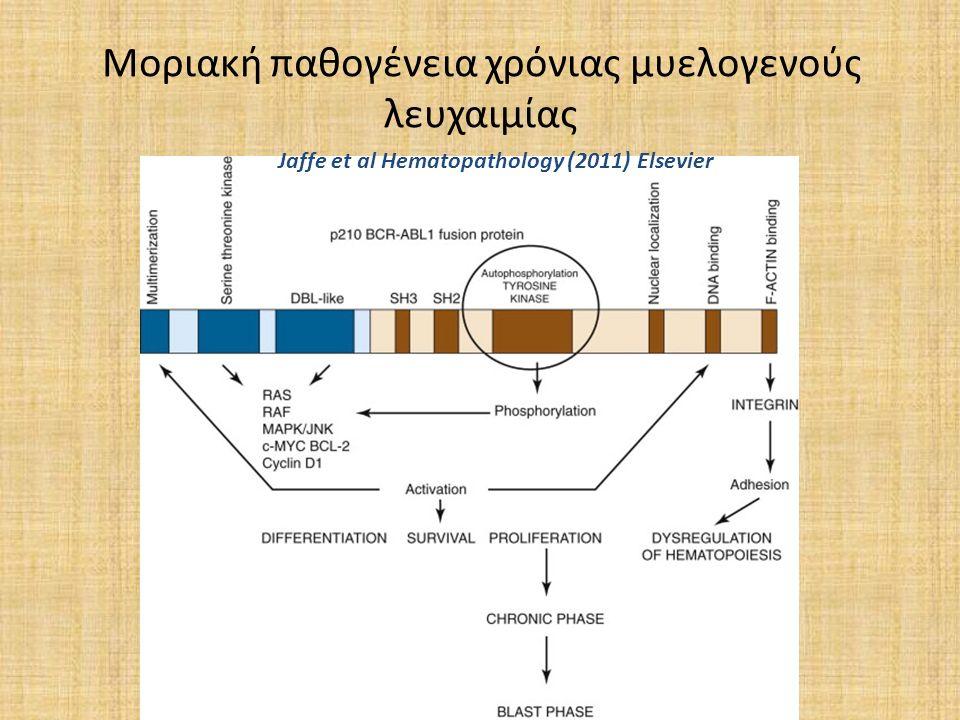 Μοριακή παθογένεια χρόνιας μυελογενούς λευχαιμίας Jaffe et al Hematopathology (2011) Elsevier