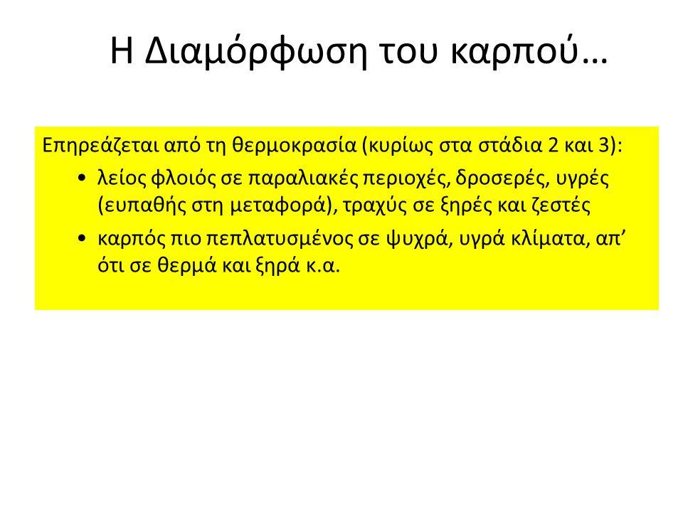 9) Μανταρινιά Κλεοπάτρα: Σε πολλά εδάφη, αλλά προτιμά ελαφρά και αμμώδη.