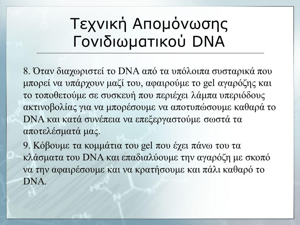 Τεχνική Απομόνωσης Γονιδιωματικού DNA 8.