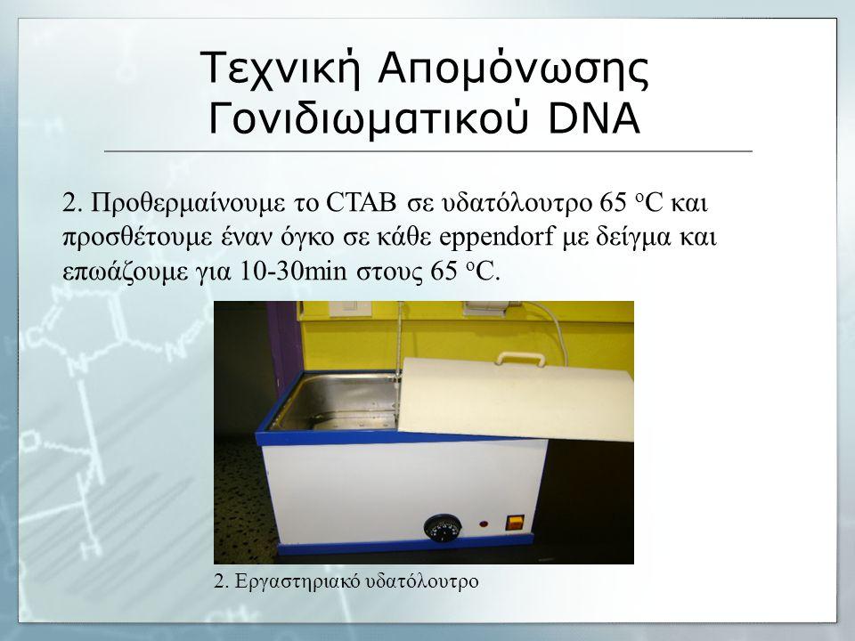 Τεχνική Απομόνωσης Γονιδιωματικού DNA 2.