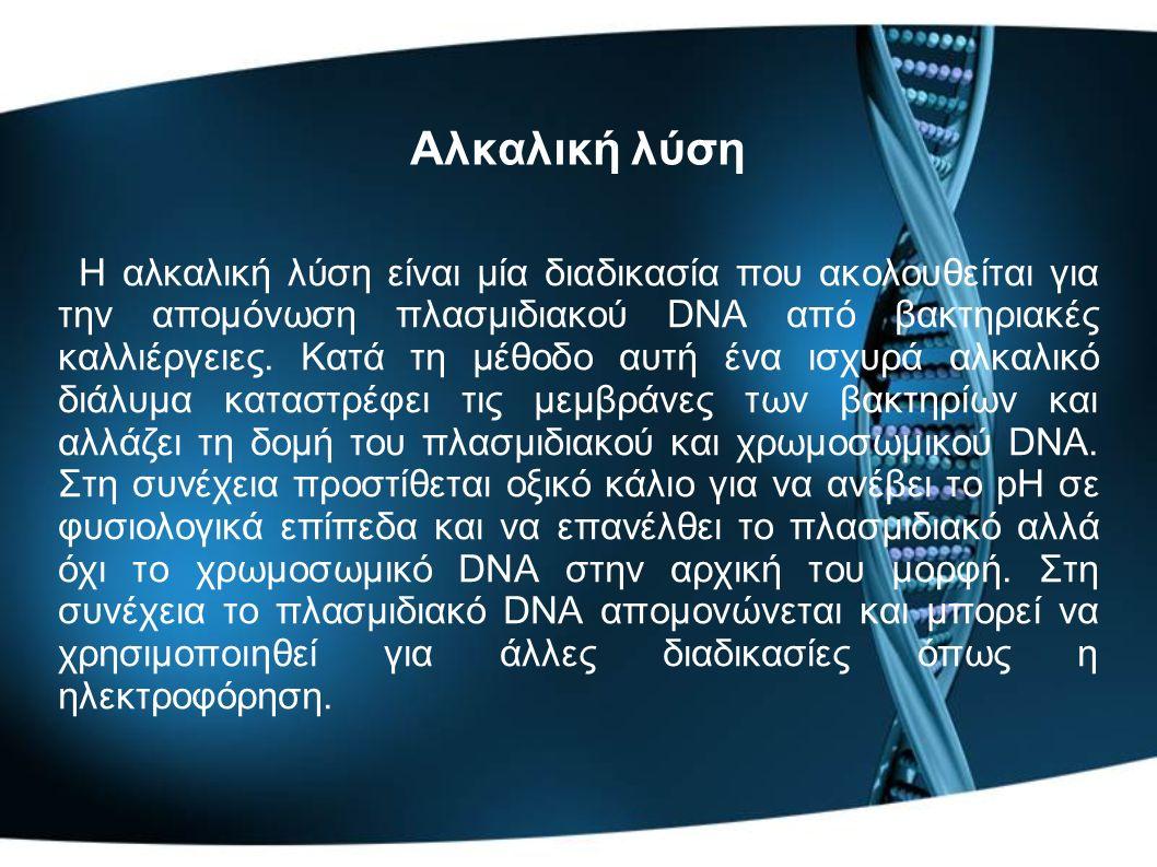 Αλκαλική λύση Η αλκαλική λύση είναι μία διαδικασία που ακολουθείται για την απομόνωση πλασμιδιακού DNA από βακτηριακές καλλιέργειες. Κατά τη μέθοδο αυ