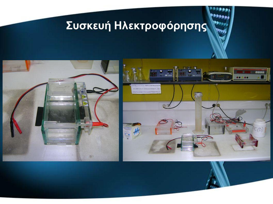 Συσκευή Ηλεκτροφόρησης