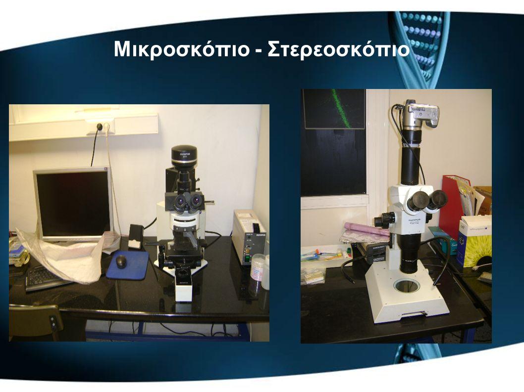 Μικροσκόπιο - Στερεοσκόπιο