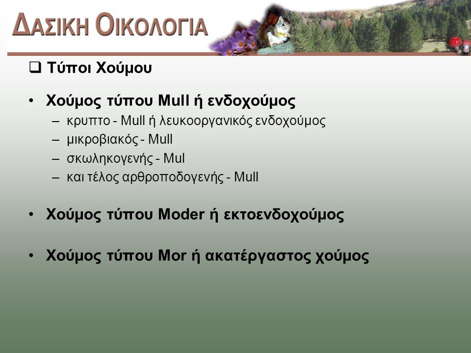  Τύποι Χούμου Χούμος τύπου Mull ή ενδοχούμος –κρυπτο - Mull ή λευκοοργανικός ενδοχούμος –μικροβιακός - Mull –σκωληκογενής - Mul –και τέλος αρθροποδογενής - Mull Χούμος τύπου Moder ή εκτοενδοχούμος Χούμος τύπου Mor ή ακατέργαστος χούμος