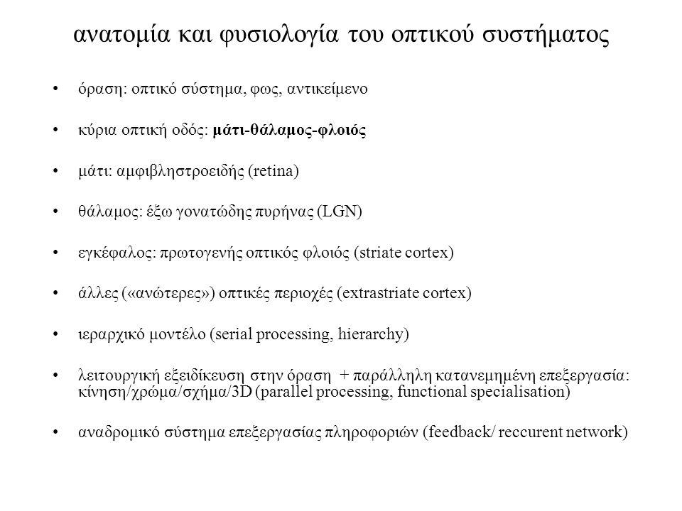 ανατομία και φυσιολογία του οπτικού συστήματος όραση: οπτικό σύστημα, φως, αντικείμενο κύρια οπτική οδός: μάτι-θάλαμος-φλοιός μάτι: αμφιβληστροειδής (retina) θάλαμος: έξω γονατώδης πυρήνας (LGN) εγκέφαλος: πρωτογενής οπτικός φλοιός (striate cortex) άλλες («ανώτερες») οπτικές περιοχές (extrastriate cortex) ιεραρχικό μοντέλο (serial processing, hierarchy) λειτουργική εξειδίκευση στην όραση + παράλληλη κατανεμημένη επεξεργασία: κίνηση/χρώμα/σχήμα/3D (parallel processing, functional specialisation) αναδρομικό σύστημα επεξεργασίας πληροφοριών (feedback/ reccurent network)