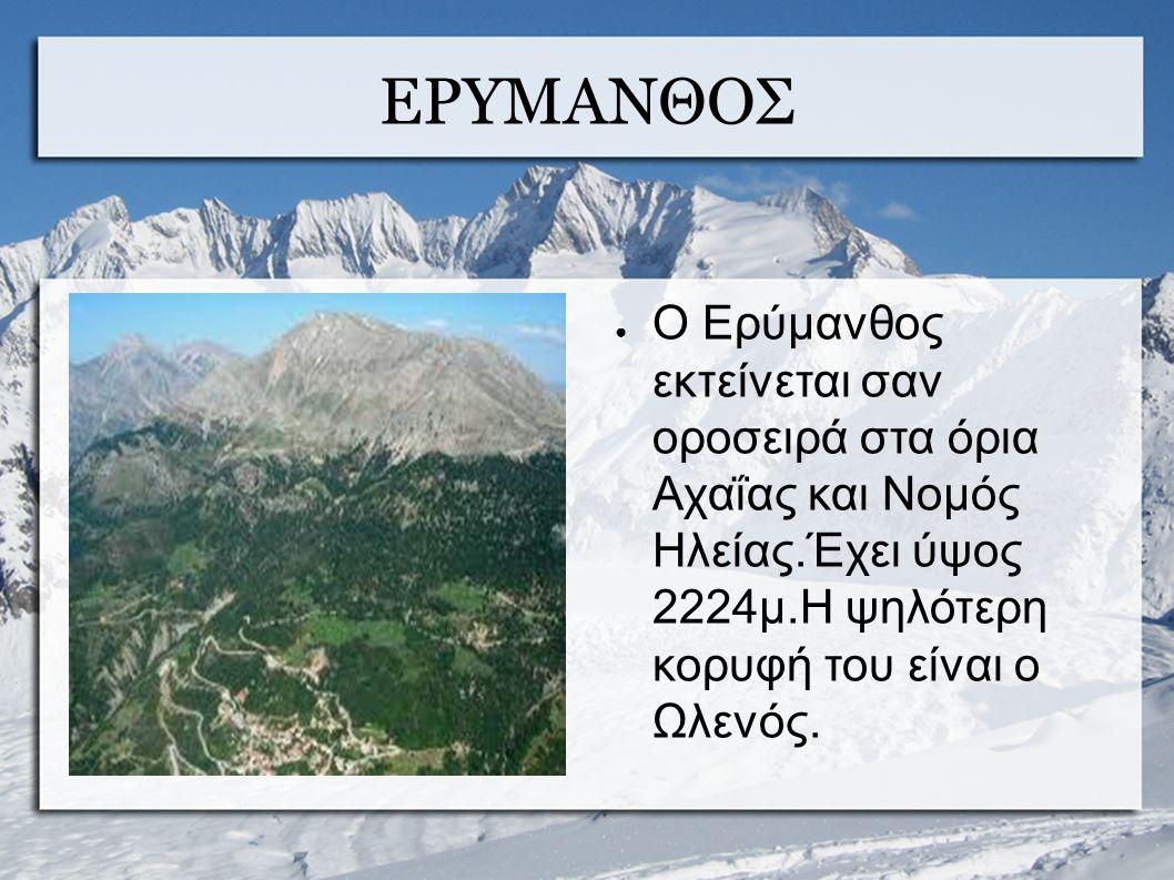 ΕΡΥΜΑΝΘΟΣ ● Ο Ερύμανθος εκτείνεται σαν οροσειρά στα όρια Αχαΐας και Νομός Ηλείας.Έχει ύψος 2224μ.Η ψηλότερη κορυφή του είναι ο Ωλενός.