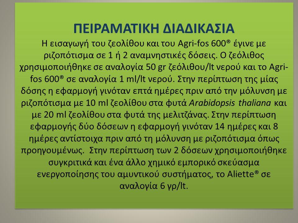 ΠΕΙΡΑΜΑΤΙΚΗ ΔΙΑΔΙΚΑΣΙΑ Η εισαγωγή του ζεολίθου και του Agri-fos 600® έγινε με ριζοπότισμα σε 1 ή 2 αναμνηστικές δόσεις.