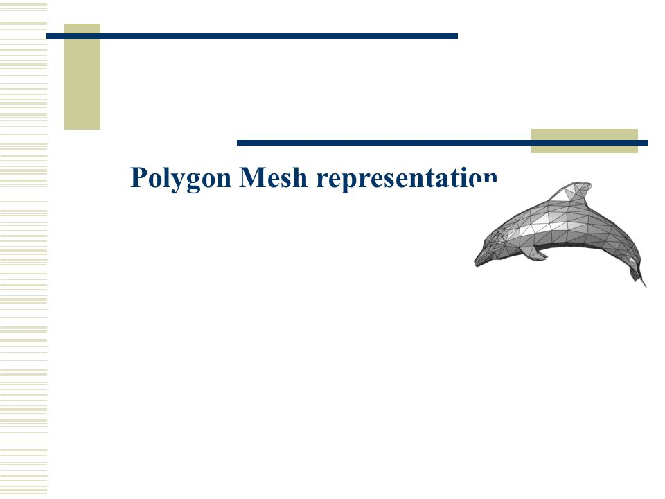 Polygon Mesh representation
