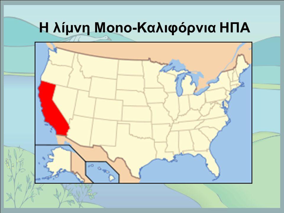 Η λίμνη Mono-Καλιφόρνια ΗΠΑ