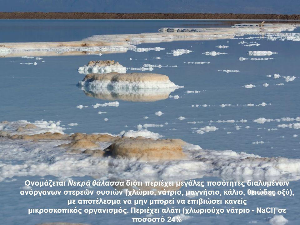 Ονομάζεται Νεκρά θάλασσα διότι περιέχει μεγάλες ποσότητες διαλυμένων ανόργανων στερεών ουσιών (χλώριο, νάτριο, μαγνήσιο, κάλιο, θειώδες οξύ), με αποτέλεσμα να μην μπορεί να επιβιώσει κανείς μικροσκοπικός οργανισμός.
