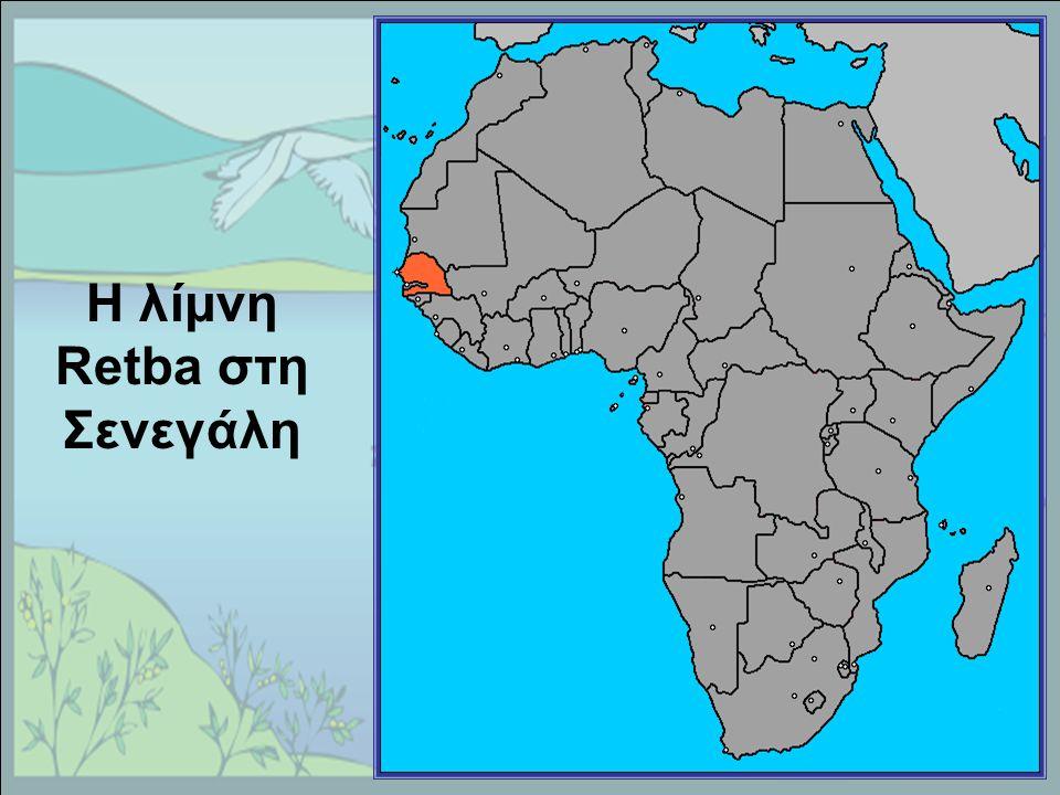 Η λίμνη Retba στη Σενεγάλη