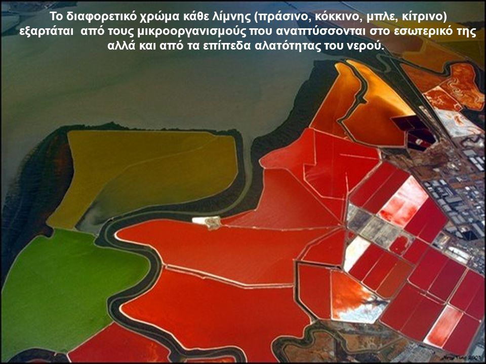 Το διαφορετικό χρώμα κάθε λίμνης (πράσινο, κόκκινο, μπλε, κίτρινο) εξαρτάται από τους μικροοργανισμούς που αναπτύσσονται στο εσωτερικό της αλλά και από τα επίπεδα αλατότητας του νερού.