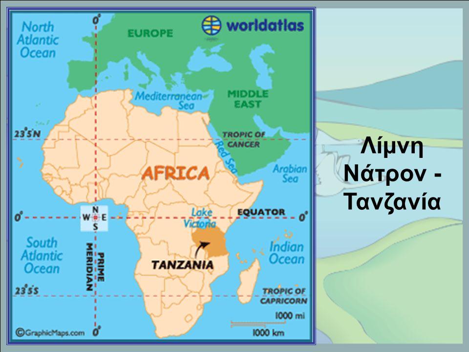Λίμνη Νάτρον - Τανζανία