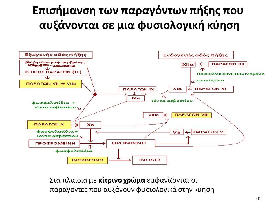 Επισήμανση των παραγόντων πήξης που αυξάνονται σε μια φυσιολογική κύηση 65 Στα πλαίσια με κίτρινο χρώμα εμφανίζονται οι παράγοντες που αυξάνουν φυσιολ