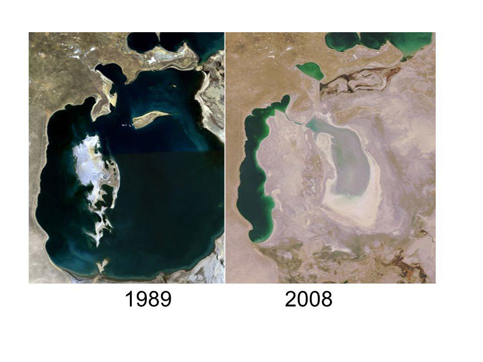 1989 2008