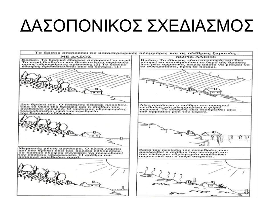ΔΑΣΟΠΟΝΙΚΟΣ ΣΧΕΔΙΑΣΜΟΣ