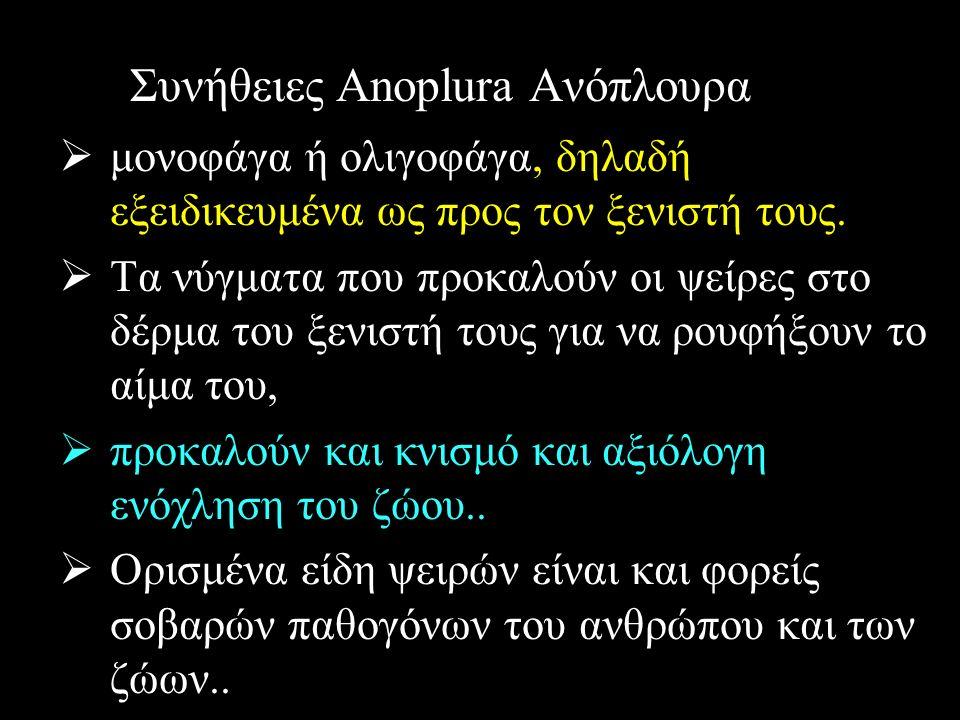 Συνήθειες Anoplura Ανόπλουρα  μονοφάγα ή ολιγοφάγα, δηλαδή εξειδικευμένα ως προς τον ξενιστή τους.  Τα νύγματα που προκαλούν οι ψείρες στο δέρμα του
