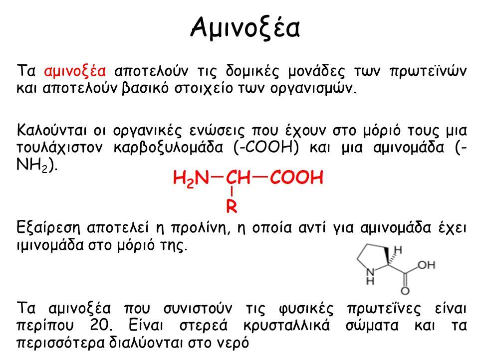 Αμινοξέα Τα αμινοξέα αποτελούν τις δομικές μονάδες των πρωτεϊνών και αποτελούν βασικό στοιχείο των οργανισμών.