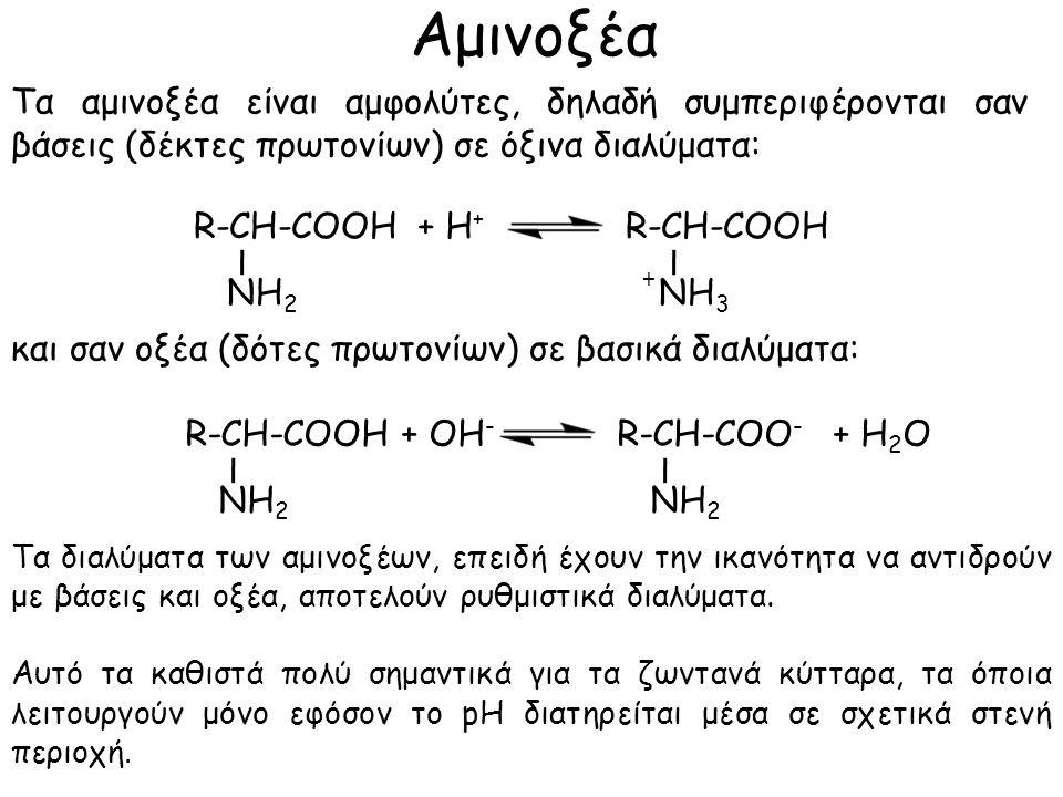 Αμινοξέα Τα αμινοξέα είναι αμφολύτες, δηλαδή συμπεριφέρονται σαν βάσεις (δέκτες πρωτονίων) σε όξινα διαλύματα: και σαν οξέα (δότες πρωτονίων) σε βασικά διαλύματα: ΝΗ 2 ΝΗ 3 + R-CH-COOH + H + ΝΗ 2 R-CH-COOHR-CH-COO - + ΟH - + Η 2 Ο Τα διαλύματα των αμινοξέων, επειδή έχουν την ικανότητα να αντιδρούν με βάσεις και οξέα, αποτελούν ρυθμιστικά διαλύματα.