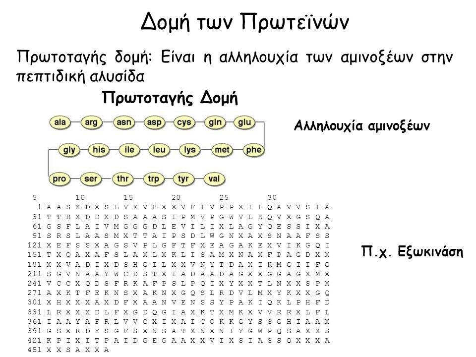 Δομή των Πρωτεϊνών Πρωτοταγής δομή: Είναι η αλληλουχία των αμινοξέων στην πεπτιδική αλυσίδα Πρωτοταγής Δομή Αλληλουχία αμινοξέων 5 10 15 20 25 30 1 A A S X D X S L V E V H X X V F I V P P X I L Q A V V S I A 31 T T R X D D X D S A A A S I P M V P G W V L K Q V X G S Q A 61 G S F L A I V M G G G D L E V I L I X L A G Y Q E S S I X A 91 S R S L A A S M X T T A I P S D L W G N X A X S N A A F S S 121 X E F S S X A G S V P L G F T F X E A G A K E X V I K G Q I 151 T X Q A X A F S L A X L X K L I S A M X N A X F P A G D X X 181 X X V A D I X D S H G I L X X V N Y T D A X I K M G I I F G 211 S G V N A A Y W C D S T X I A D A A D A G X X G G A G X M X 241 V C C X Q D S F R K A F P S L P Q I X Y X X T L N X X S P X 271 A X K T F E K N S X A K N X G Q S L R D V L M X Y K X X G Q 301 X H X X X A X D F X A A N V E N S S Y P A K I Q K L P H F D 331 L R X X X D L F X G D Q G I A X K T X M K X V V R R X L F L 361 I A A Y A F R L V V C X I X A I C Q K K G Y S S G H I A A X 391 G S X R D Y S G F S X N S A T X N X N I Y G W P Q S A X X S 421 K P I X I T P A I D G E G A A X X V I X S I A S S Q X X X A 451 X X S A X X A Π.χ.