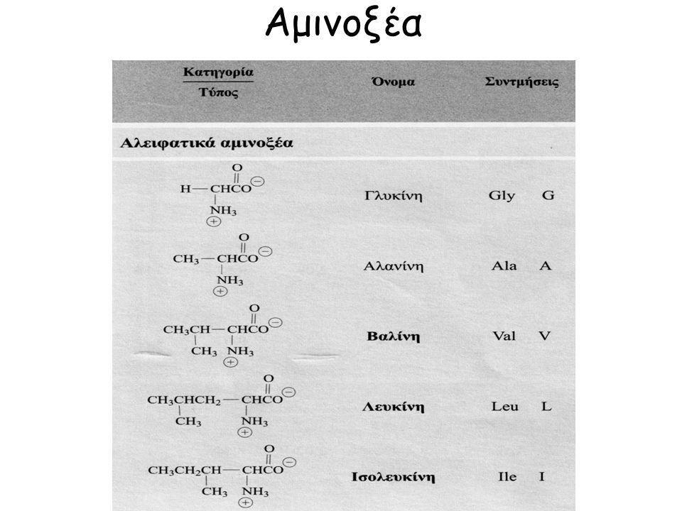 Αλβουμίνες (διαλύονται στο νερό), Γλοβουλίνες (διαλύονται σε αραια διαλύματα ηλεκτρολυτών), Γλουτελίνες (διαλύονται σε αραιά διαλύματα οξέων- βάσεων), Προλαμίνες (διαλύονται σε αλκοόλη 70-80ο, ζεϊνη, γλοιαδίνη), Σκληροπρωτεϊνες (αδιάλυτες, ελαστίνη, κερατίνη, φιβροϊνη), Ιστόνες (έχουν ισχυρά βασικό χαρακτήρα), Πρωταμίνες.