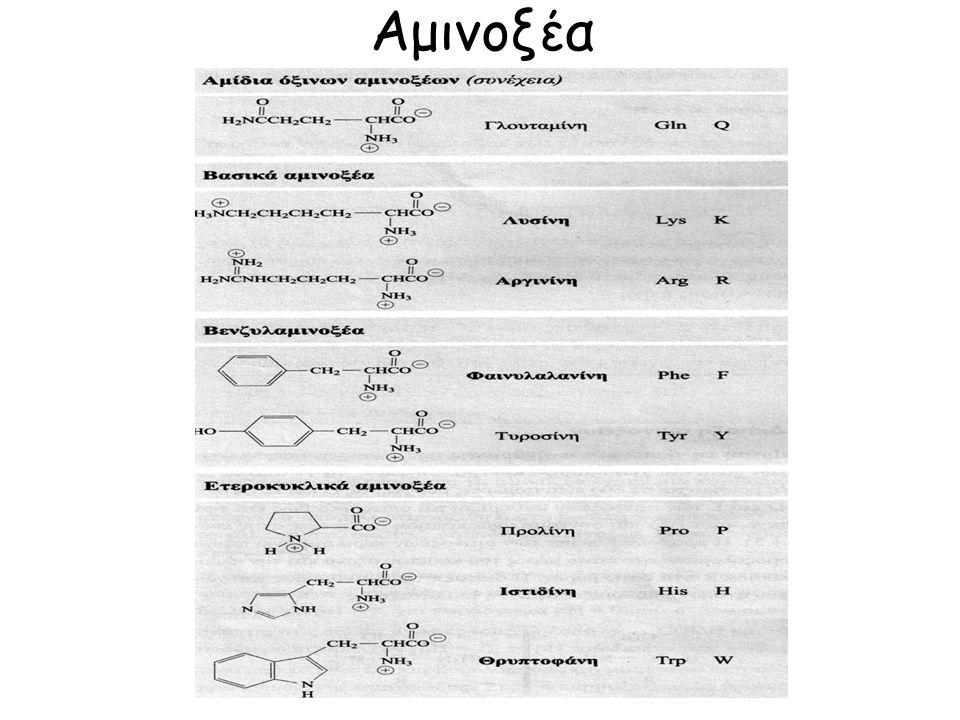 Οι συζευγμένες πρωτεΐνες ως προς την προσθετική ομάδα Νουκλεοπρωτεϊνες (νουκλεϊνικά οξέα, συστατικά της χρωματίνης), Χρωμοπρωτεϊνες (έγχρωμη προσθετική ομάδα, αιμοσφαιρίνη), Φωσφορο-πρωτεϊνες (φωσφορικό οξύ, καζεΐνη), Γλυκοπρωτεϊνες (ανοσοσφαιρίνες, βλεννο-πρωτεΐνες, λεκτίνες), Λιποπρωτεϊνες.
