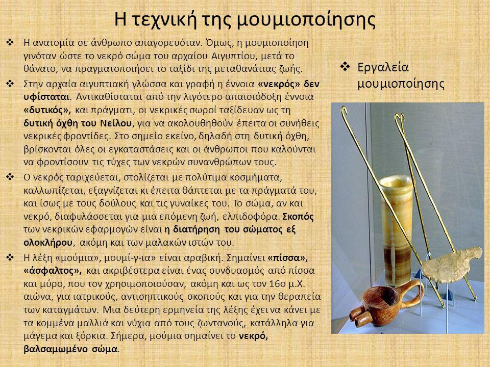 Η τεχνική της μουμιοποίησης  Η ανατομία σε άνθρωπο απαγορευόταν. Όμως, η μουμιοποίηση γινόταν ώστε το νεκρό σώμα του αρχαίου Αιγυπτίου, μετά το θάνατ