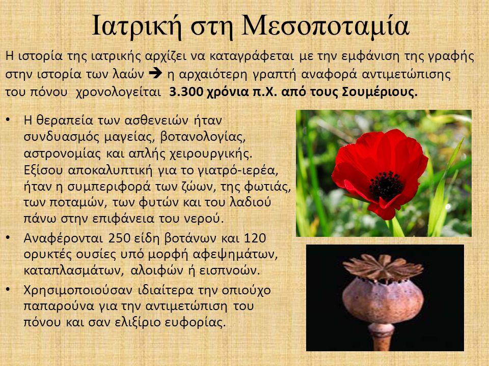 Ιατρική στη Μεσοποταμία  η αλόη  ο γλυκάνισος  η μπελαντόνα  το κάρδαμο  το ρετσινόλαδο  ο δυόσμος  η γλυκόριζα  το ρόδι Άλλες φυτικές ουσίες που χρησιμοποιούνταν συχνά ήταν: