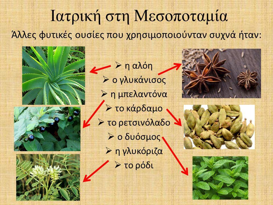 Ιατρική στη Μεσοποταμία  η αλόη  ο γλυκάνισος  η μπελαντόνα  το κάρδαμο  το ρετσινόλαδο  ο δυόσμος  η γλυκόριζα  το ρόδι Άλλες φυτικές ουσίες
